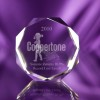Capital Ideas Coppertone Award Paperweight